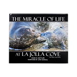 The Miracle of Life at La Jolla Cove- Hardcover