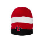 SD Spear Striped Beanie